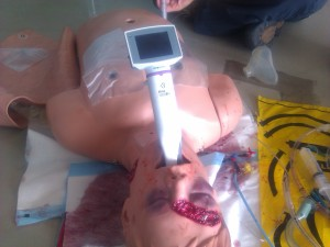 Simulaids Deluxe Difficult Airway manikin with King Vision Video Laryngoscope
