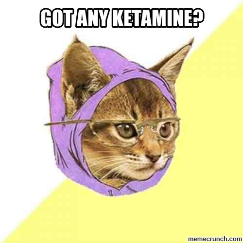http://memecrunch.com/meme/26E0/got-any-ketamine